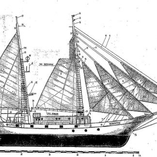 Schooner Leningrad 1938 ship model plans